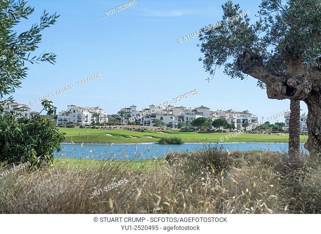 Water Hazard and Olive trees on the Golf Course at Hacienda Riquelme Golf Resort, Murcia, Spain