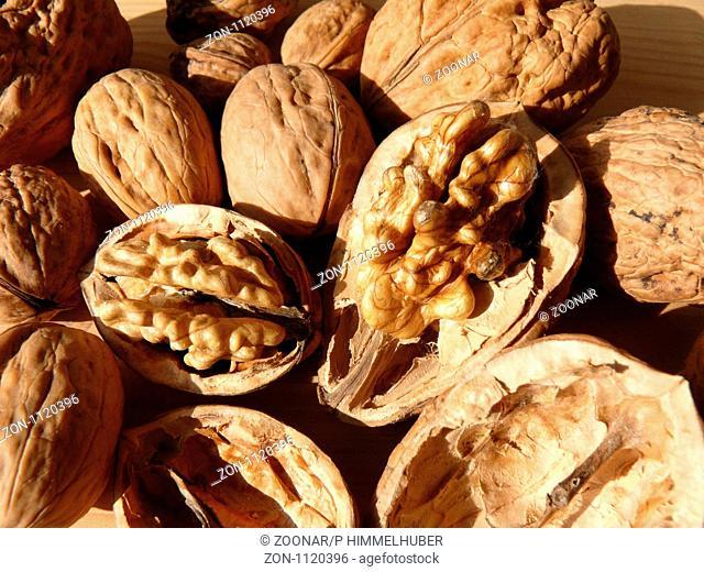 Nüsse von einem Sämling links und Nüsse von einem veredelten Baum rechts