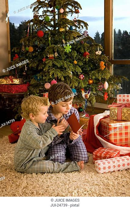 Boys reading Christmas card on rug in front of tree