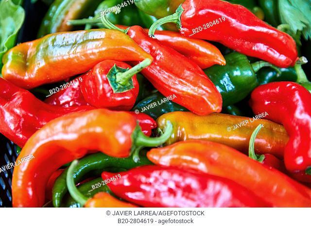 Peppers, Ordizia Market, Special Christmas market, Ordizia, Gipuzkoa, Basque Country, Spain, Europe