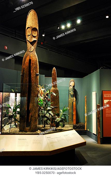Native Polynesian art on display at the Field Museum, Chicago