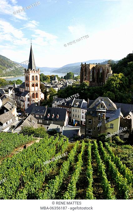 Germany, Rhineland-Palatinate, Bacharach, the romantic Rhine listed as World Heritage by UNESCO