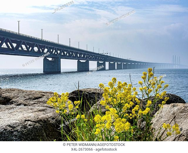 Öresund Bridge between Copenhagen and Malmö, world's longest cable-stayed bridge, Sweden, Europe