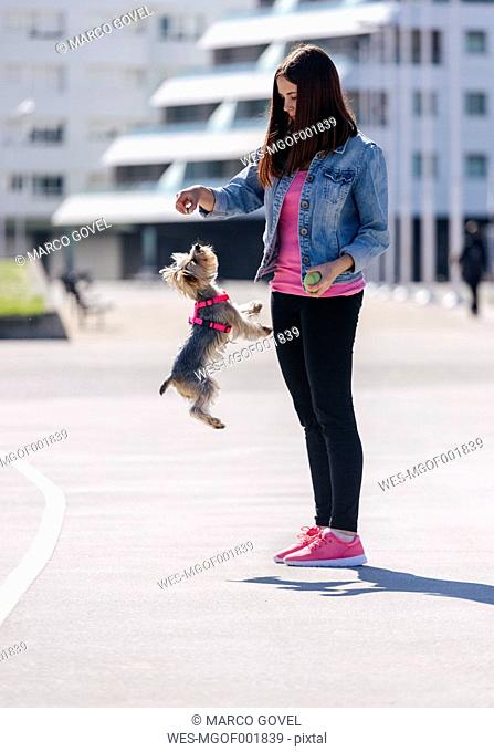 Young woman playing with her Yorkshire Terrier