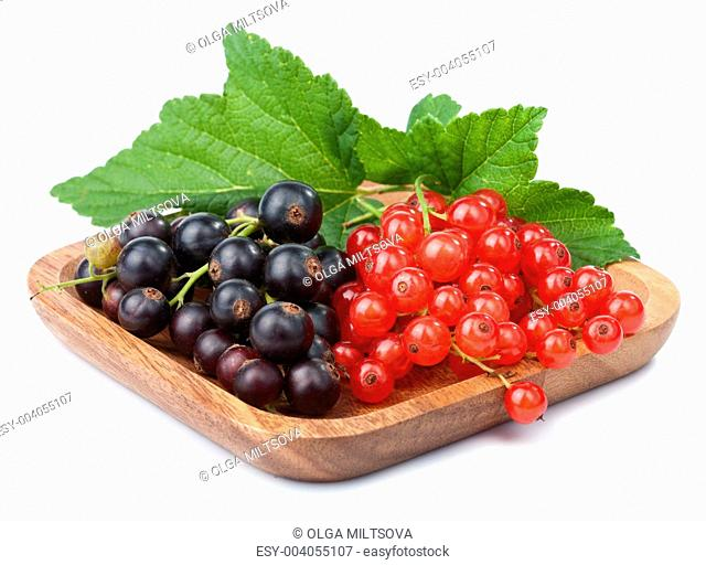 currant in bowl isolated