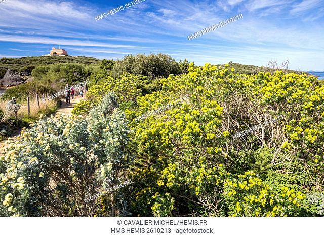 France, Var, Iles d'Hyeres, national park of Port-Cros, Island of Porquerolles, the black beach south side of Langoustier