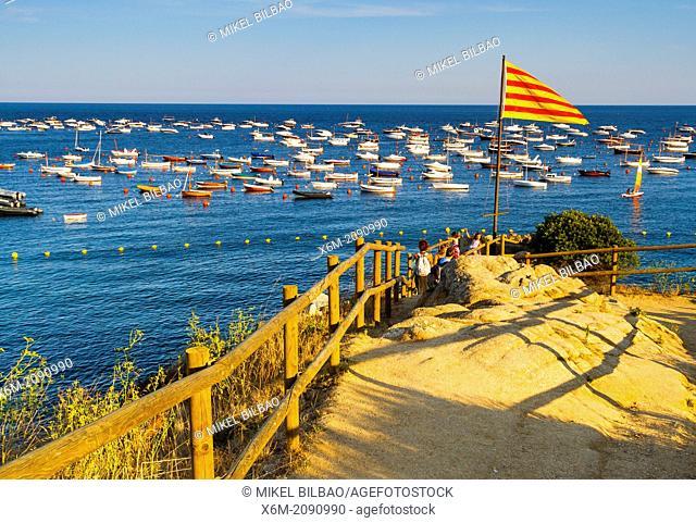 Calella de Palafrugell, Palafrugell. Costa Brava, Gerona. Catalonia, Spain, Europe