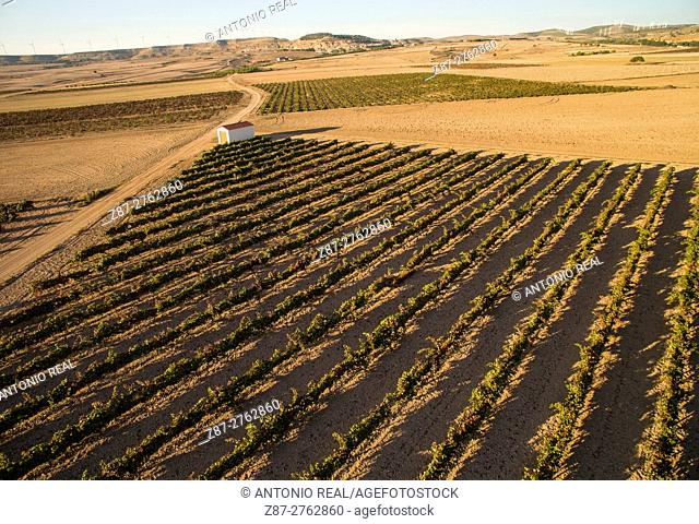 Aerial photography using a drone: vineyards. Higueruela, Albacete province, Castilla-La Mancha, Spain