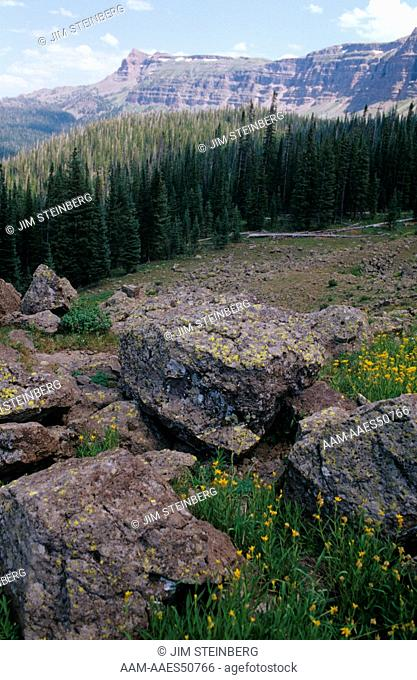Rock Falls of volcanic Past, Flat Tops Wilderness Area, Routt NF, CO