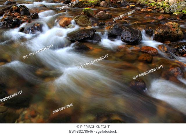 mountain creek, United Kingdom, Scotland, Cairngorms National Park