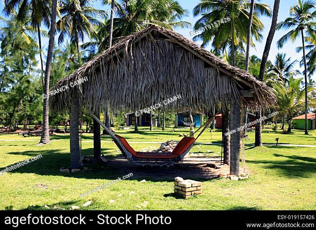 hammock in maracaipe