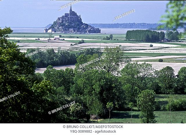 view of Mont Saint Michel and the polders, cultivable areas, carrots, leeks, garlic. La Manche, Normandy, France