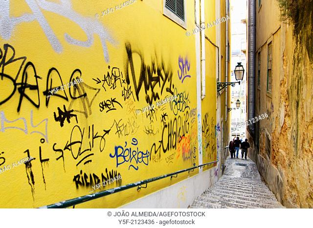 The narrow alley that actually is one of the entrances to Bica