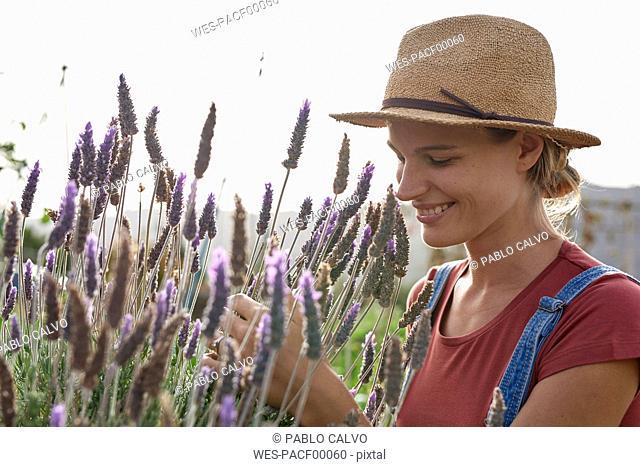 Smiling woman wearing straw hat in lavender field