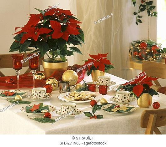 Table laid for coffee with poinsettias