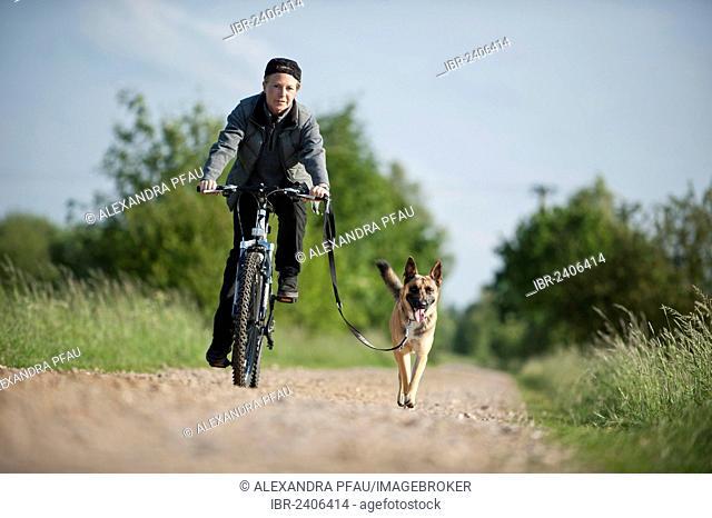 Malinois running beside a bike