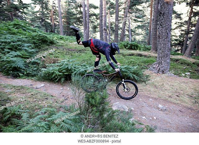 Mountainbiker riding downhill on forest path doing a trick