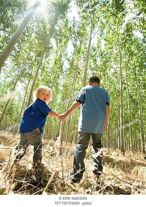 USA, Oregon, Boardman, Boys 8-9 walking between poplar trees in tree farm