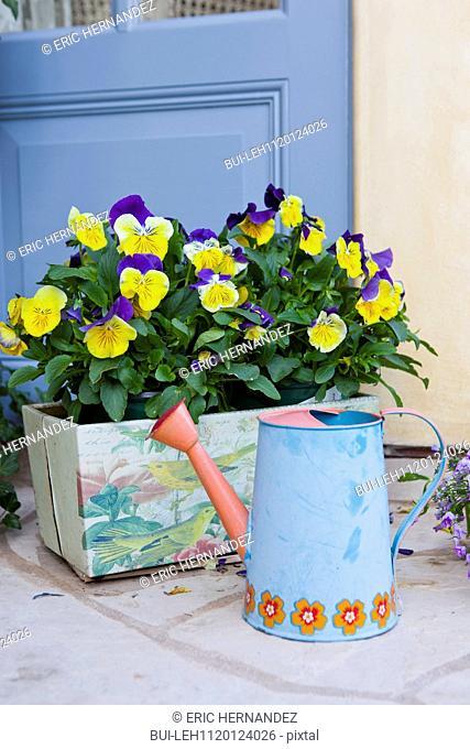 Close-up of watering can and flower pot at Balboa Island; California; USA