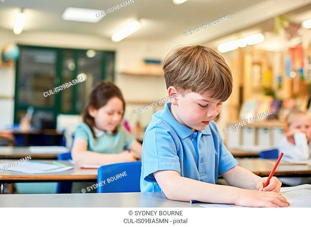 Schoolboy counting writing in classroom lesson at primary school