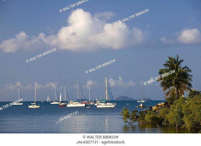 Australia, Queensland, Whitsunday Coast, Airlie Beach, Town Marina