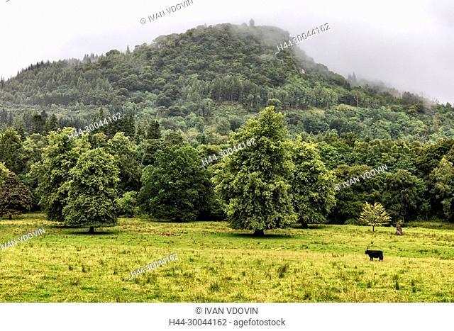 Highlands landscape, Inverary, Argyll, Scotland, UK