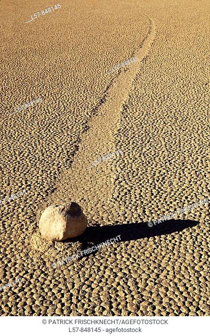 Rock, Race Track, desert area, Death Valley National Park, California, USA