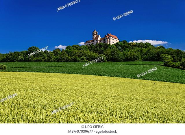 Germany, Hesse, administrative district of Main-Kinzig, Ronneburg, district Altwiedermus, Burg Ronneburg (castle)