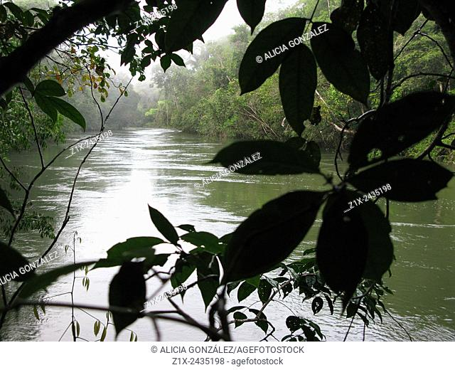 Cataniapo River in the Jungle of Puerto Ayacucho, Amazonas state, Venezuela
