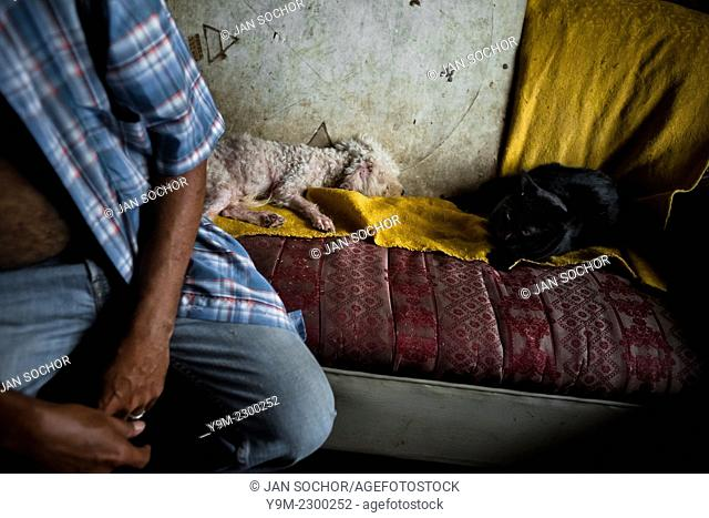 A Colombian urban shaman (brujo) sits on the sofa before starting the ritual of predicting the future in his house in Cali, Colombia, 17 April 2013