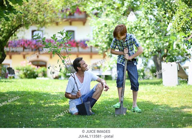 Father and boy holding sapling in garden