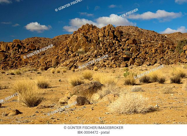 Desert landscape with the heavily eroded Granitberg Mountain in Richtersveld Transfrontier National Park, Namaqualand, Northern Cape, South Africa
