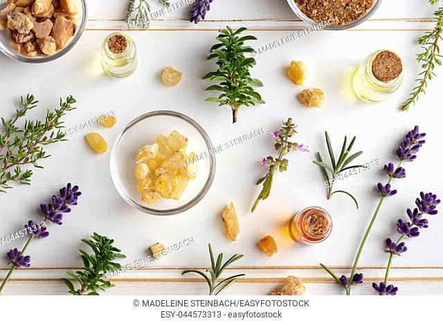 Bottles of essential oil with frankincense, tulsi, mountain savory and other herbs on a white background