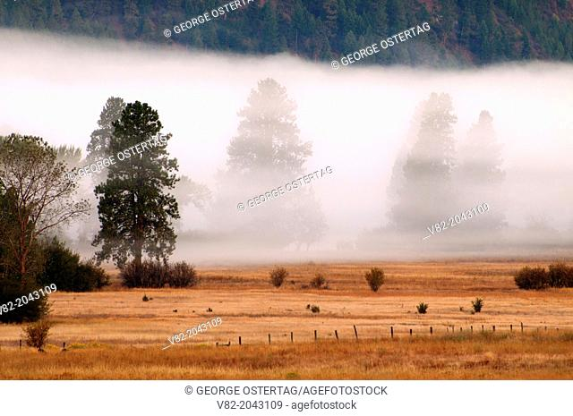 Fog in Garden Valley, Wildlife Canyon Scenic Byway, Boise National Forest, Idaho