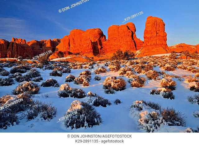 Elephant Butte in evening light with fresh snow, Arches National Park, Utah, USA