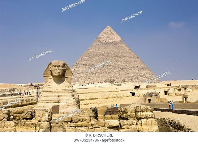 Great Sphinx of Giza against Khafra Pyramid, Egypt, Kairo