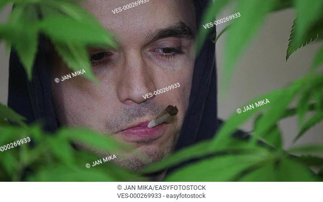 Closeup of a man smoking Marijuana joint