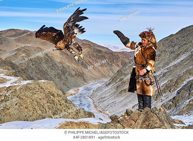 Mongolia, Bayan-Olgii province, Kazakh eagle hunter, Golden Eagle hunting in Altai mountains, winter season