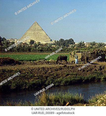 Hinter einem Nilkanal und fruchtbarem Ackerland erhebt sich die Pyramide des Cheops in Gizeh bei Kairo, Ägypten, Ende 1970er Jahre