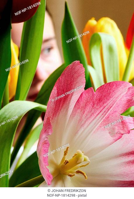 Close-up of a girl looking through flowers