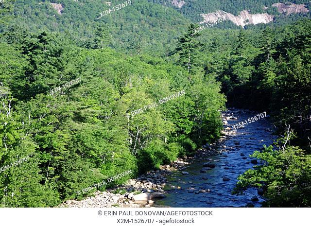 Swift River during the summer months in the White Mountains, New Hampshire USA