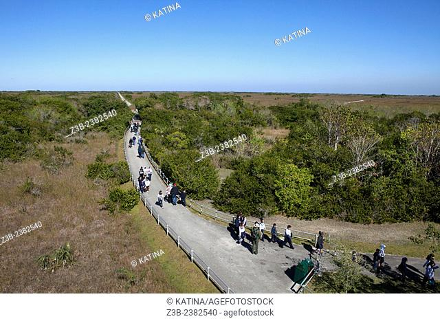View from Shark Valley Observation Tower of visitors walking in the park, Shark Valley area of Everglades National Park, Florida, FL, USA