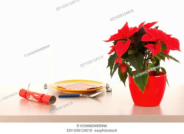 Loneliness in Christmas time