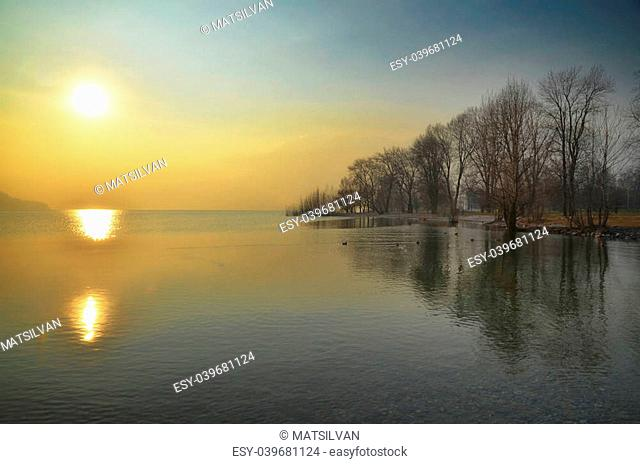 sunshine over a lake in a foggy day with trees
