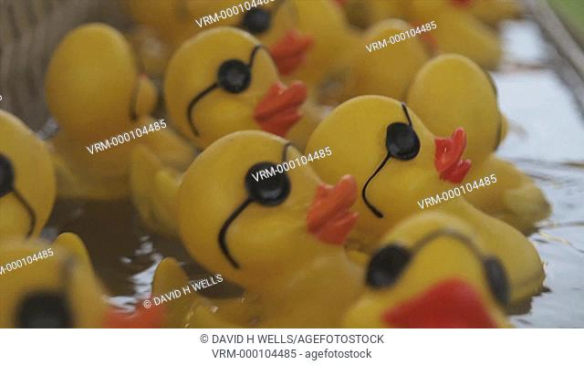 Time-Lapse of rubber ducks in game at fair in Warwick, Rhode Island