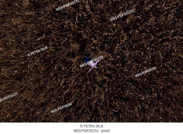 Austria, Kitzbuehel, woman lying in wheat field, aerial view