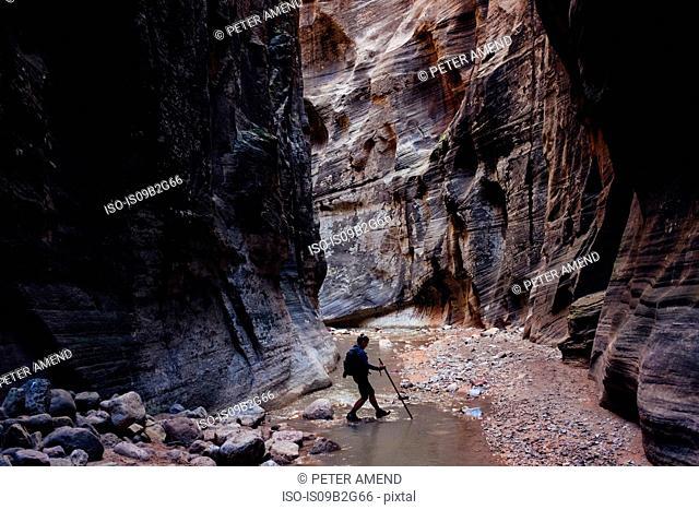 Hiker crossing stream in ravine, Zion National Park, Utah, USA