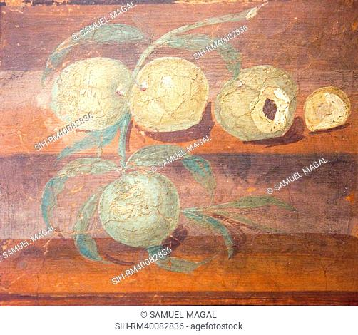 The House of Stags was probably built between 41 and 68 AD. In this painting, found in one of its rooms, four peaches complete with branch and leaves rest on...