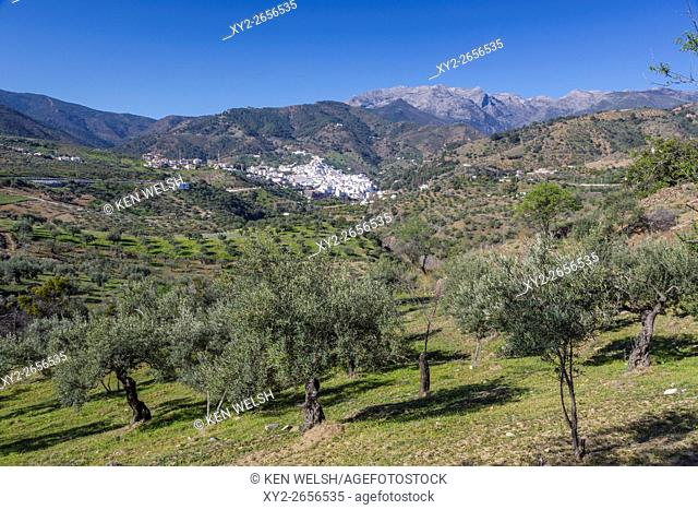 Tolox, Malaga Province, Andalusia, southern Spain. Typical white-washed mountain town. Tolox is famed as a spa town