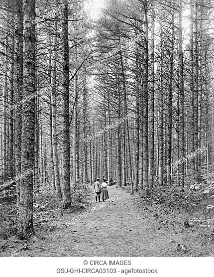Rear View Portrait of Couple Walking along Wide Trail, Cathedral Wood, White Mountains, North Conway, New Hampshire, USA, Detroit, Publishing, Company, 1900